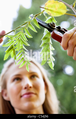 Young woman pruning plants - Stock Photo