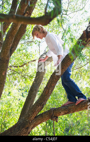 Happy little boy standing on tree branch - Stock Photo