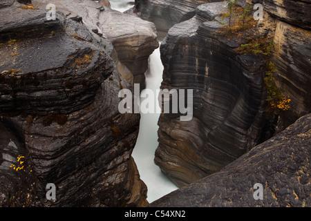River flowing through a slot canyon, Mistaya Canyon, Banff National Park, Alberta, Canada - Stock Photo