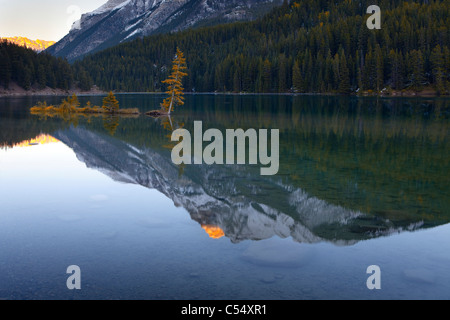 Reflection of mountains and trees in a lake, Two Jack Lake, Banff National Park, Alberta, Canada - Stock Photo