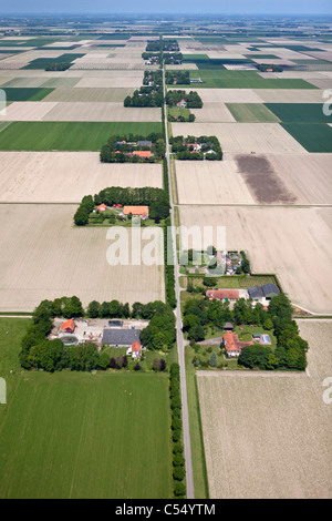 The Netherlands, Ens, Farms and farmland in polder landscape. Aerial. - Stock Photo