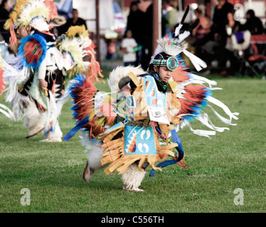 A Native American Pow Wow Competitor With Feather Bustle