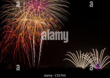 Walt Disney World Magic Kingdom Fireworks high in sky panoramic view from Grand Floridian Resort purple light on - Stock Photo