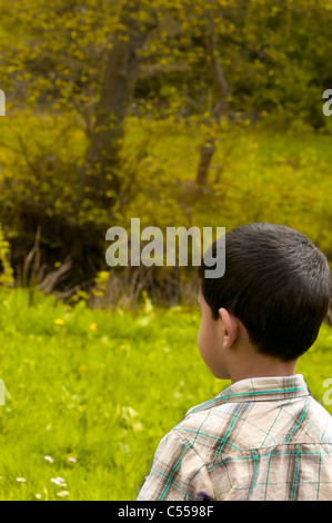 Rear view of a middle eastern boy looking away - Stock Photo