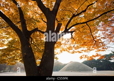 Mound tomb in a park, Royal Tomb Of King Naemul Of Silla, Gyeongju, South Korea - Stock Photo