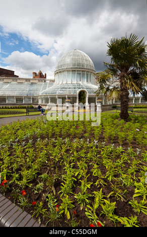 Palm House, Botanic Gardens, Belfast, Northern Ireland, UK - Stock Photo