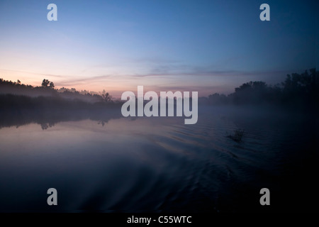 The Netherlands, Werkendam, De Biesbosch national park. Landscape at sunrise. - Stock Photo