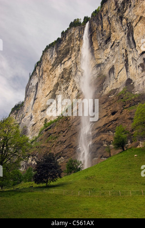 Low angle view of a waterfall, Staubbach Falls, Lauterbrunnen, Interlaken-Oberhasli, Berne Canton, Switzerland - Stock Photo