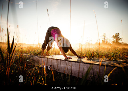 Mid adult woman doing morning yoga in a field, Upper Herring Lake Nature Preserve, Frankfort, Benzie County, Michigan, - Stock Photo