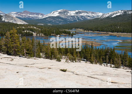 View from Pothole dome over a flooded Tuolumne meadows, Yosemite national park, California - Stock Photo