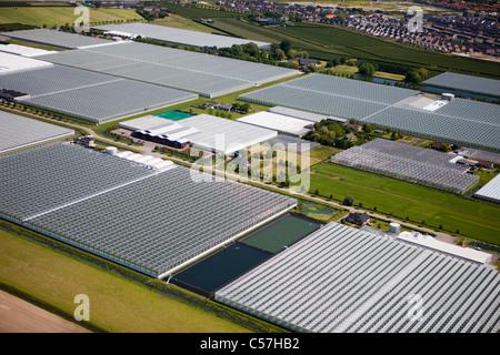 The Netherlands, Utrecht, Greenhouses. Aerial. - Stock Photo