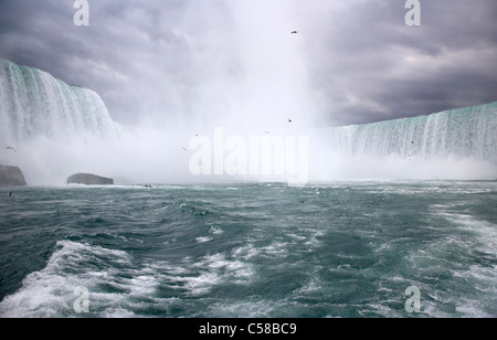the horseshoe falls viewed from the maid of the mist niagara falls ontario canada - Stock Photo