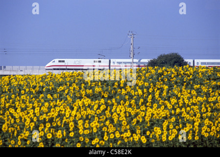 german high speed ice intercity express train at platform in berlin stock photo royalty free. Black Bedroom Furniture Sets. Home Design Ideas