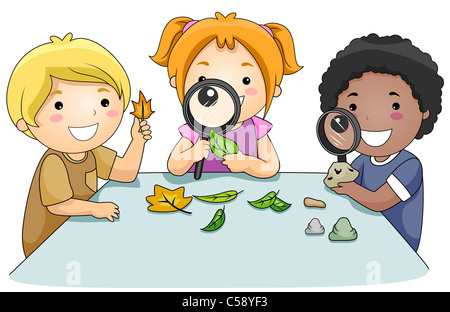 A Small Group of Kids Studying Leaves Through Magnifying Glasses - Stock Photo