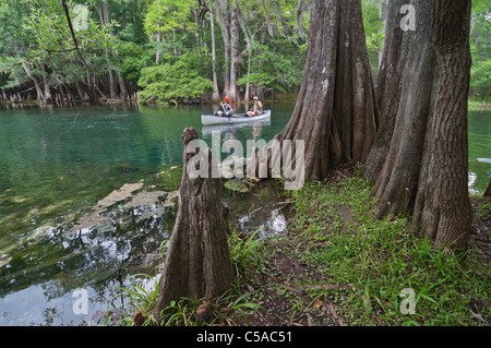canoeing at Manatee Springs State Park Florida - Stock Photo