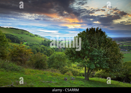 Looking west from Devils Dyke, West Sussex - Stock Photo