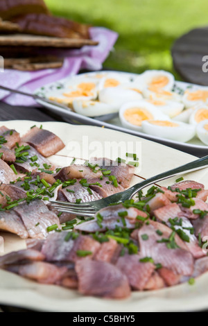 Extreme close-up of delicious food served outdoors on midsummer eve - Stock Photo