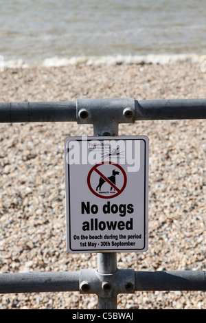 No dogs allowed sign on Sandgate Beach Kent - Stock Photo