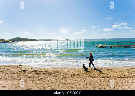 Woman with dog at water's edge on the beach - Stock Photo