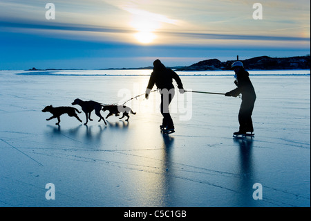 Silhouette of two people and dogs on the ice at sunset - Stock Photo