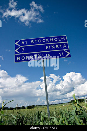 Low angle view of road signs on vast field against blue sky and clouds - Stock Photo