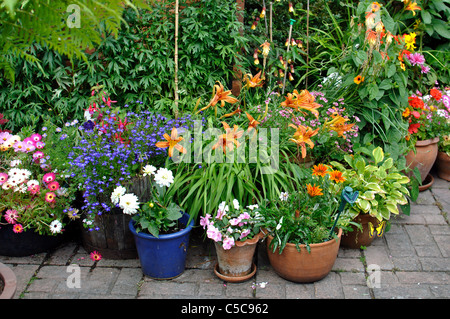 ... Plants In Pots And Containers On A Patio   Stock Photo