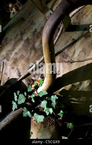 old wheelbarrows in woods - Stock Photo