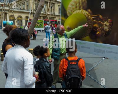 Paris, France, Street Scenes, Palais Royale, Students Visiting Environmental Photo Exhibit Outdoors - Stock Photo