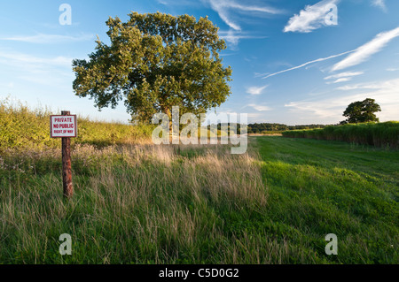 A 'No public right of way' sign beside a wide field margin and a crop of green Elephant Grass (Miscanthus)  Holdenby, - Stock Photo