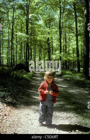Little girl walking on dirt track along beech trees in the forest - Stock Photo
