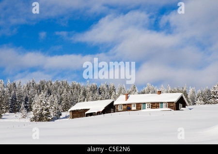 Snowed cabins and trees against blue sky and clouds on winter landscape - Stock Photo