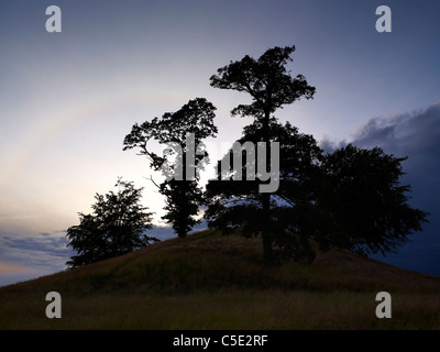 Scenic view of silhouette trees on landscape against the sky at dusk - Stock Photo