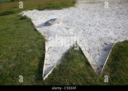 Head Detail of The White Horse at Roundway Devizes Wiltshire - Stock Photo