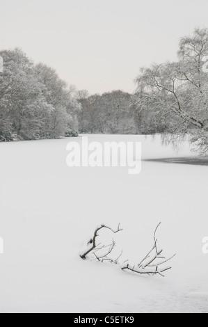 Frozen lake in winter landscape - Stock Photo