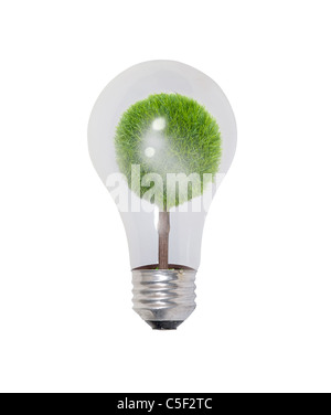 Round glass bulb lightbulb used to light a room with a potted tree inside - path included - Stock Photo