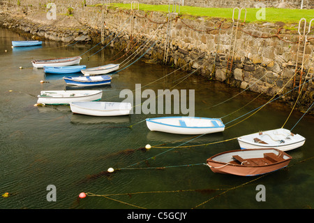Rowing boats tied up in a harbour - Stock Photo