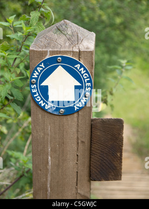 A waymark post on the Angles Way a long distance path at Burgh Castle Norfolk a 77 mile/124km section of around - Stock Photo