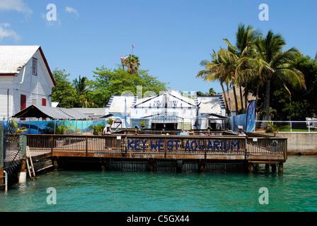Key West Aquarium Stock Photo Royalty Free Image 9929928 Alamy