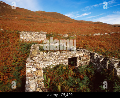 Ruined houses and field-wall at the Clearance village of Boreraig in southern Skye, western Scottish Highlands and - Stock Photo