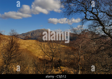 Bare woodlands frame a distant view of rocky Ben Resipol in the Sunart district, western Scotland - Stock Photo