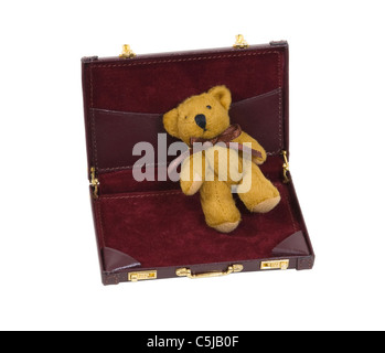 Business security shown by a teddy bear in a briefcase - path included - Stock Photo