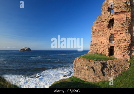 Bass rock from Tantallon castle north berwick east lothian scotland - Stock Photo