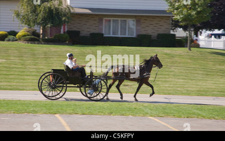 Family rides in Amish Cart in Ohio. - Stock Photo