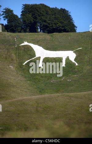 Cherhill White Horse Wiltshire England UK - Stock Photo
