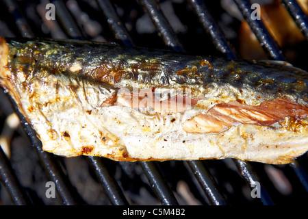 grilled barbqued bbqd fresh mackerel fish - Stock Photo