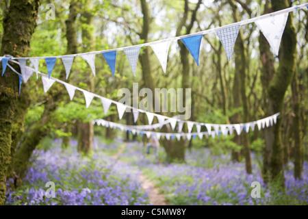 Vintage bunting in Dorset bluebell woodland, England, UK - Stock Photo