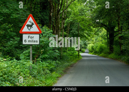 Road sign on narrow lane in Cumbria, UK, warning drivers about deer. - Stock Photo