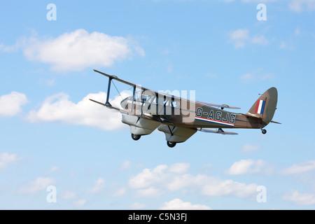 De Havilland DH89A Dragon Rapide G-AGJG in flight - Stock Photo