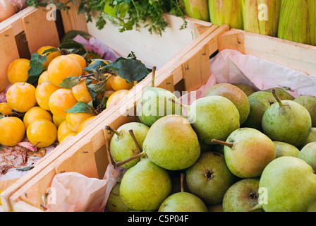 Pears and plums on fruit stall - Stock Photo