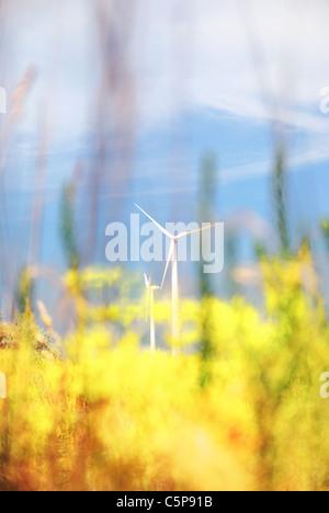 Wind turbines, Crimea, Ukraine - Stock Photo